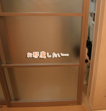 2011-03-22-001.jpg