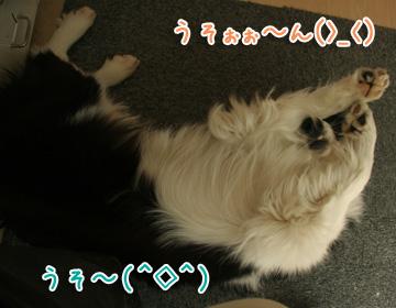 2011-04-10-015.jpg
