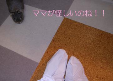 2008-08-31-003.jpg