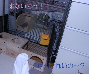 2008-08-31-012.jpg