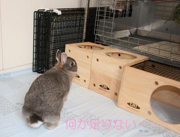 2008-09-07-013.jpg