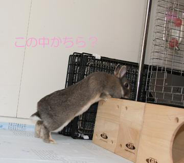 2008-09-07-023.jpg