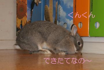 2008-09-07-050.jpg