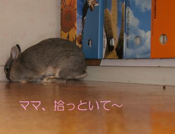 2008-09-07-053.jpg