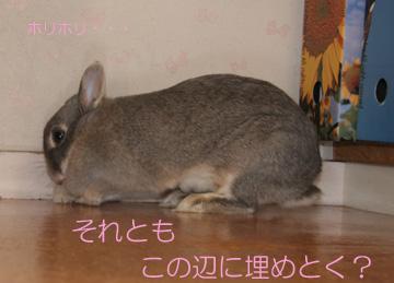 2008-09-07-061.jpg