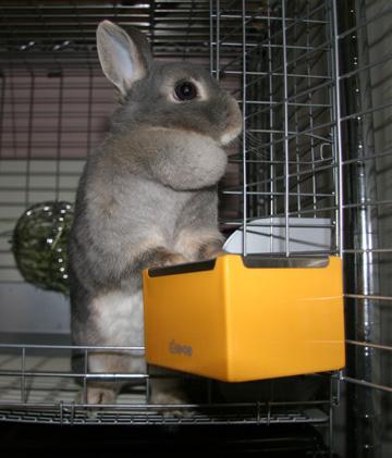 2009-03-12-010.jpg