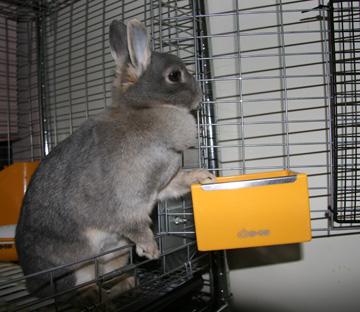 2009-03-12-020.jpg