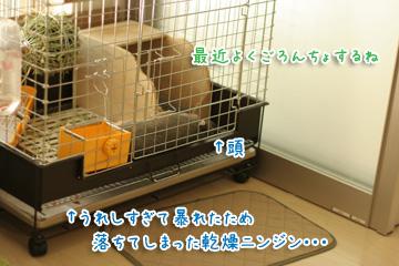 2010-05-16-097.jpg