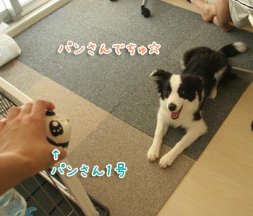 2010-07-25-022.jpg