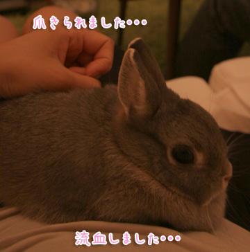 2010-10-03-028.jpg