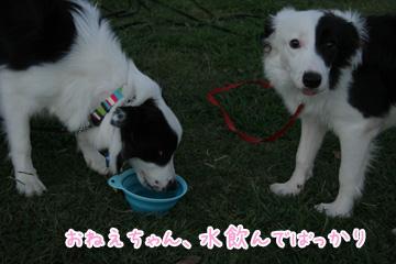 2010-10-10-056.jpg