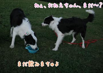 2010-10-10-059.jpg