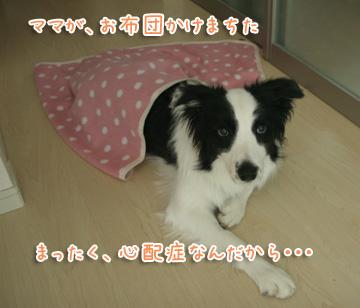 2010-12-07-031.jpg