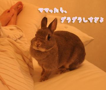 2010-12-09-003.jpg
