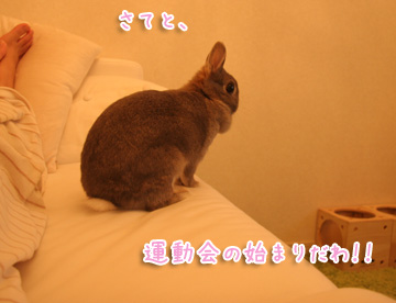 2010-12-09-005.jpg