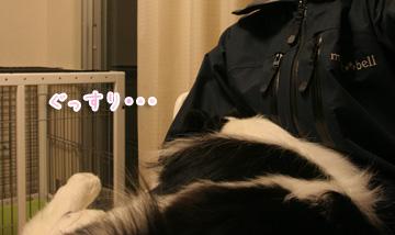 2011-02-22-010.jpg